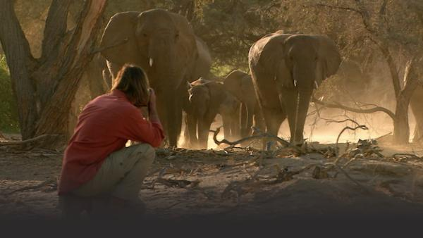Man on knees in foreground takes picture of a herd of elephants approaching him