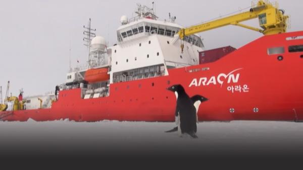 A cargo ship in Antarctica.