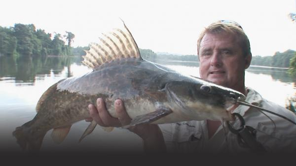 Man holding up a large catfish with leopard spots