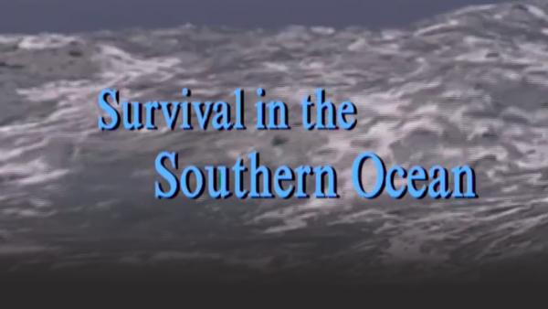 Survival int the Southern Ocean