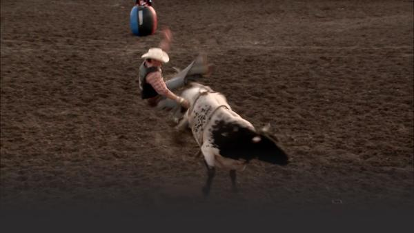 Strength and flexibility are the key to bull riding.