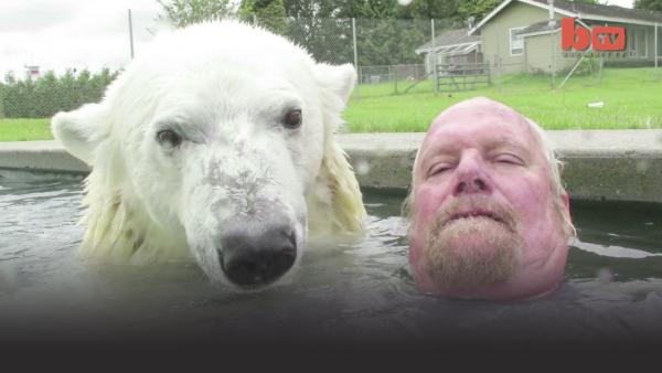 A man and a polar bear in a pool